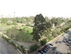 All Gardenia properties have amazing international garden view in Nasr city - Cairo - Egypt